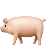 Pig Emoji on Apple macOS and iOS iPhones