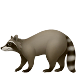 Raccoon Emoji on Apple macOS and iOS iPhones