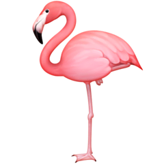 Flamingo Emoji on Facebook