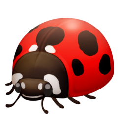 Lady Beetle Emoji on Facebook