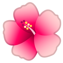 Hibiscus Emoji on Google Android and Chromebooks