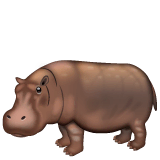 Hippopotamus Emoji on WhatsApp