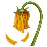 Wilted Flower Emoji on WhatsApp